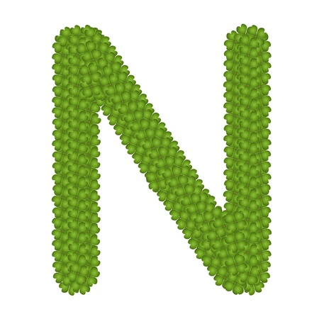 Letter N, Alphabet Letters Made of Four Leaf Clover Isolated on White Background Stock Photo - 16010851