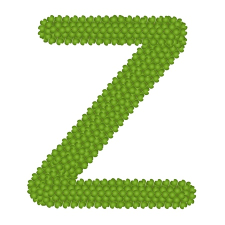 typewriter key: Letter Z, Alphabet Letters Made of Four Leaf Clover Isolated on White Background
