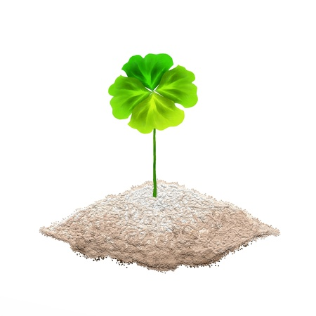 Symbols for Fortune and Luck, Hand Drawing of A Fresh Four Leaf Clover Plant or Shamrock on The ground Stock Photo - 16119468