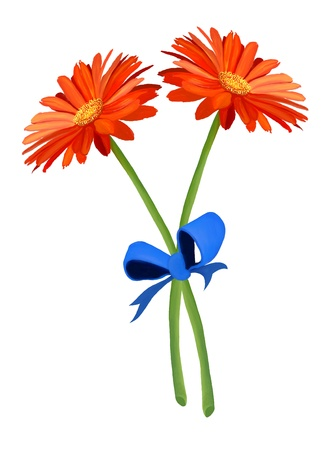 cut flowers: Hand Drawing, A Ribbon Bow Tied in A Knot  with Two Bright and Beautiful Gerbera Daisys Stock Photo