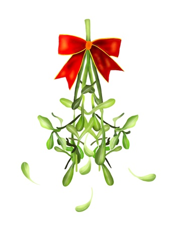 Mistletoe Bunch and White Berries Hanging with A Christmas Red Ribbon For Christmas Celebration, Isolated on White Background Stock Photo - 16695452