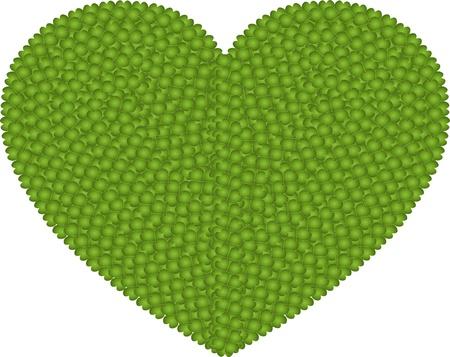 hape: Ecologia e Concetto Amore, Verde Fresco Four Leaf Clover formando una forma grande cuore isolato su sfondo bianco