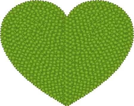 hape: Ecology and Love Concept, Fresh Green Four Leaf Clover Forming A Big Heart Shape Isolated on White Background