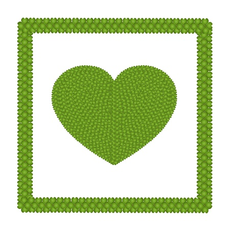 Ecology and Love Concept, Fresh Green Four Leaf Clover Forming A Heart Shape in Square Frame Isolated on White Background photo