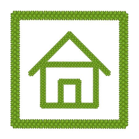 Ecology Concept, Fresh Green Four Leaf Clover Forming House Icon in Square Frame Isolated on White Background Stock Photo - 17155668