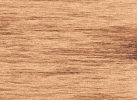 Hand Drawing of Wooden Texture of Cutted Tree Trunk Background Stock Photo - 17417613