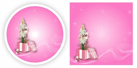 Elegant Abstract Template with Tuberose Flower in Gift Box CD and DVD Cover in Pink Color Background Stock Photo - 17544246