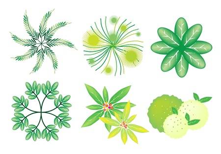 An Illustration Collection of Landscaping Treetop Symbols or Isometric Trees and Plants for Garden Decoration