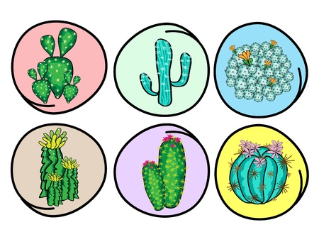 An Illustration Collection of Cactus and Cactus Flowers for Garden Decoration, Isolated on White Background Stock Vector - 17788349
