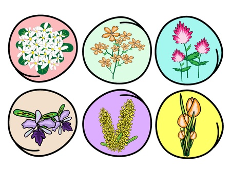 An Illustration Collection of Beautiful Flower and Orchid for Garden Decoration Stock Vector - 17788354