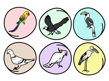 An Illustration Collection of Beautiful Wild Birds, Great Hornbill, Eagle, Pigeons, Parrot, Macaw and Egret on Round Background Vector