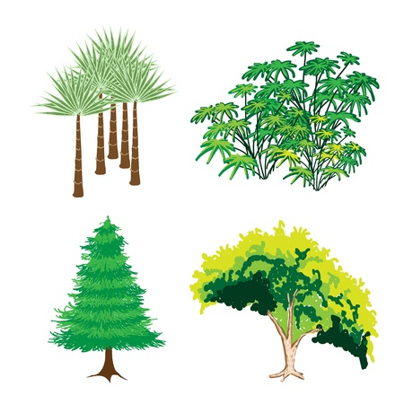 An Illustration Collection of Landscaping Tree Symbols or Isometric Green Trees and Plants, Variety of Plants, Evergreens and Trees for Garden Decoration Vector
