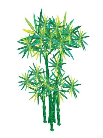 An Illustration of Landscaping Tree Symbol or Isometric of Bamboo Tree for Garden Decoration Vector
