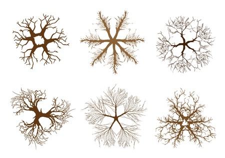 Une collection Illustration Brown Couleur des symboles Treetop am�nagement paysager ou isom�triques Arbres et plantes pour d�coration de jardin
