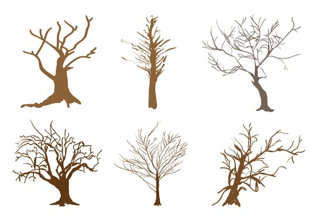 houseplant: An Illustration Collection Brown Color of Landscaping Symbols or Isometric Trees and Plants for Garden Decoration