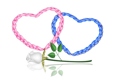 Love Concept, Illustration of Beautiful Pink and Blue Heart Shapes Made of The Rope with A Perfect White Rose Vettoriali
