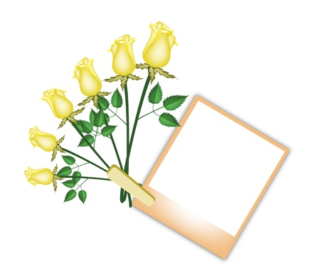 Love and Friendship Concept, Illustration of Six Lovely Yellow Roses with Blank Instant Photo Prints or Polaroid Frames Isolated on A White Background Stock Vector - 18346980