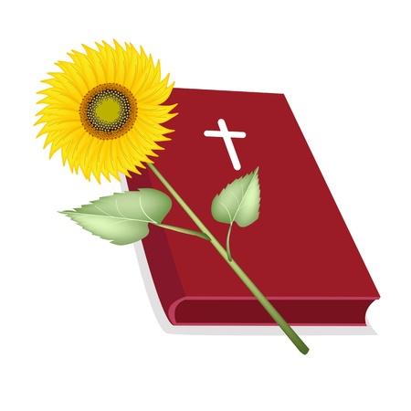 cruz de madera: Una ilustraci�n de la Biblia cubierto rojo con cruz de madera y un hermoso girasol, la Fundaci�n de la Cristiandad