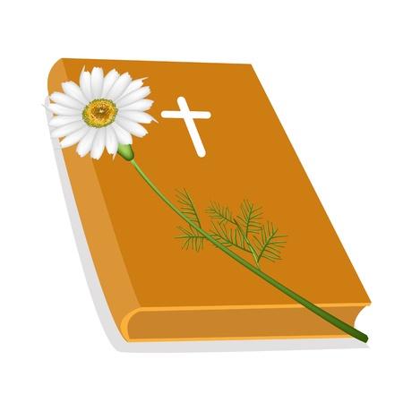 cruz de madera: Una ilustraci�n de Orange cubierto Biblia con la cruz de madera y una hermosa flor de la margarita blanca, la Fundaci�n de la Cristiandad