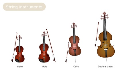 An Illustration Collection of Beautiful Musical Instrument String, Violin, Viola, Cello and Double Bass with Bows Isolated on White Background Ilustração