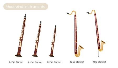 melodious: Music Instrument, Various Kind of Brown Vintage Clarinets, B-Flat Clarinet, E-Flat Clarinet, A-Flat Clarinet, Bass Clarinet and Alto Clarinet Isolated on White Background