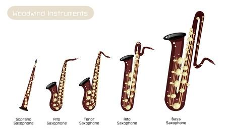 soprano saxophone: Diversos tipos de Brown Instrumen vintage de viento de madera, Saxofón Soprano, Saxofón Alto, Saxofón Tenor, saxofón barítono y bajo saxofón aislado en el fondo blanco
