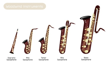 Various Kind of Brown Vintage Woodwind Instrumen, Soprano Saxophone, Alto Saxophone, Tenor Saxophone, Baritone Saxophone and Bass Saxophone Isolated on White Background Illustration