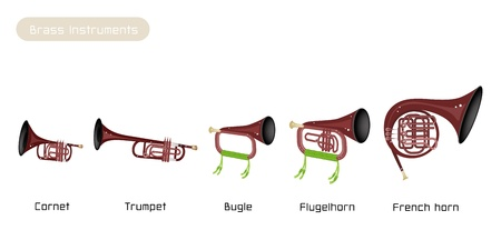 cornet: Illustration Brown Color of Musical Vintage Brass Instrument, Cornet, Trumpet, Bugle, Flugelhorn and French Horn Isolated on White Background
