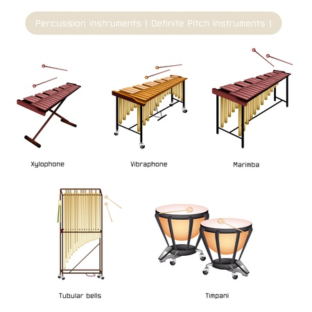 Illustration Brown Color Collection of Vintage Percussion Instruments, Vibraphone, Marimba, Xylophone, Tubular Bells and Timpani Isolated on White Background
