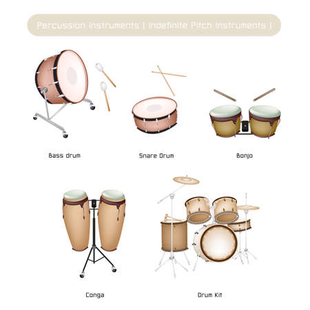 Collection of Vintage Musical Percussion Instruments, Bongo, Conga, Bass Drum, Snare Drum and Drum Kit Isolated on White Background Vector