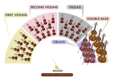 Illustratie Collectie van verschillende afdelingen van String Instrument voor Symfonieorkest Layout Diagram, viool, altviool, cello en contrabas