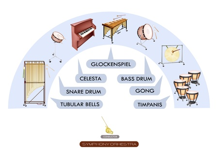 tubular: Illustration Collection of Different Sections of Percussion Instrument for Philharmonia Symphony Orchestra Seating Plans