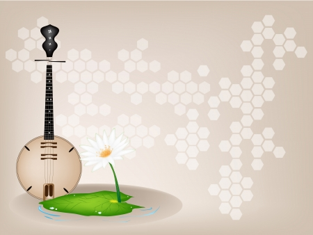 dan: Music Instrument, An Illustration of Banjo or Dan Nguyet and White Water Lily or Lotus Flower on Beautiful Vintage Brown Stage Background with Copy Space for Text Decorated