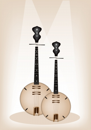 Music Instrument, An Illustration Brown Color of Banjo or Dan Nguyet on Brown Stage Background with Copy Space for Text Decorated  Vector