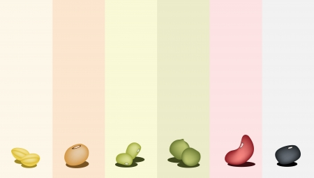 produits c�r�aliers: Une rang�e de diff�rents haricots secs, haricot mungo, haricot, Black Eye Bean, haricot de soja et de pois cass�s jaunes sur fond multicolore Illustration