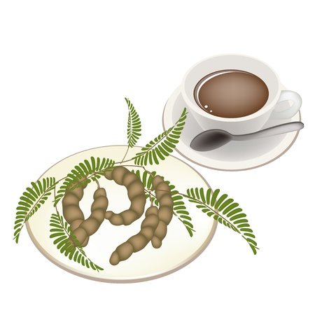 worcestershire: Coffee Time, A Cup of Hot Coffee with Fresh Brown Ripening Pods of Sweet Tamarind, Green Leaves and Seed Isolated On White Background