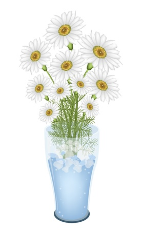 white daisy: A Symbol of Love, Bright and Beautiful Bouquet of Chamomile Flower or White Daisy Flowers in Glass Vase Isolated on White Background Illustration