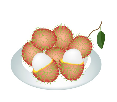 rambutan: Fresh Fruits, An Illustration of Fresh Red Rambutan and Green Leaves on A Beautiful white Dish  Illustration