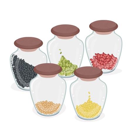 germinate: Different Dried Beans in Glass Jar, Mung Bean, Kidney Bean, Black Bean, Soy Bean and Yellow Split Peas