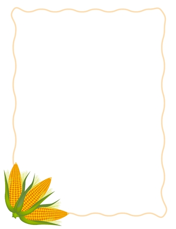 Three Fresh Ripe Sweet Corn and Green Husk with Brown Frame on A White Background