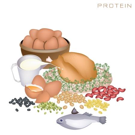 Diversos tipos de alimentos con prote�nas para mejorar la ingesta de nutrientes y beneficios para la salud, la prote�na es uno de los principales tipos de nutrientes Foto de archivo - 22583145