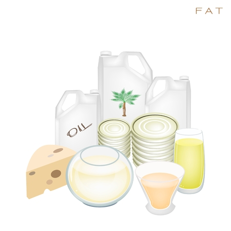 Various Kind of Fat Products to Improve Nutrient Intake and Health Benefits, Fat Is One of The Main Types of Nutrients  Vector