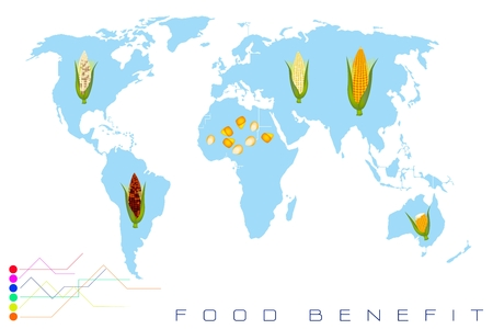 food distribution: Food Benefit, Detailed Illustration of A Map of Corn Production and Distribution On A Global Scale Illustration
