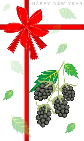 An Illustration Collection of Delicious Fresh Blackberries With Green Leaves on 2014 New Year Greeting Card  Vector