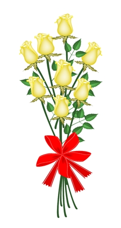 Symbol of Love and Luxury, An Illustration of Beautiful Yellow Rose Boquet with Red Ribbon and Bow for Someone Special  Vector