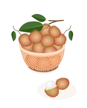 rambutan: Fresh Fruits, An Illustration of Fresh Red Rambutan and Green Leaves on A Beautiful Wicker Basket Illustration