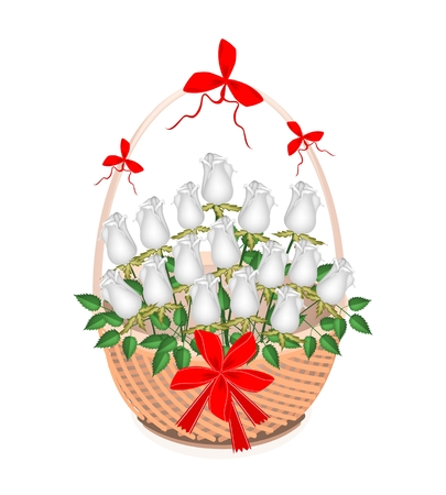 Symbol of Love and Luxury, An Illustration of Beautiful White Rose Boquet with Red Ribbon and Bow on A Beautiful Wicker Basket for Someone Special  Vector