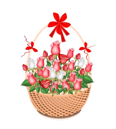 Symbol of Love and Luxury, An Illustration of Beautiful White and Red Rose Boquet with Red Ribbon and Bow on A Beautiful Wicker Basket for Someone Special  illustration