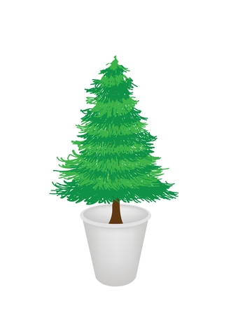 hedge trees: An Illustration of Beautiful Christmas Tree, Fir Tree or Pine Tree in A Flowerpot for Garden Decoration Illustration