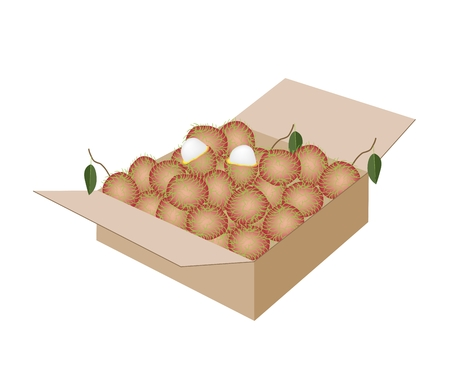 rambutan: Fresh Fruits, An Illustration of Fresh Red Rambutan and Green Leaves in A Cardboard Box, Ready for Shipping or Delivery.